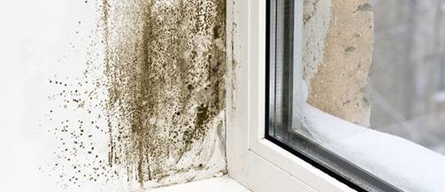 For Condensation, Mould and Damp